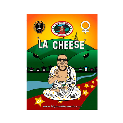 big-buddha-l-a-cheese