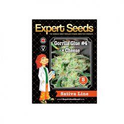 Семена GorrillaGlue4 Cheese Expert Seeds Гроушоп AvingudaHaze