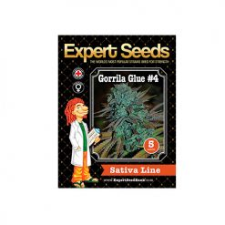 Семена GorrillaGlue4 Expert Seeds Гроушоп AvingudaHaze