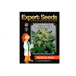 Семена White Gold Expert Seeds Гроушоп AvingudaHaze