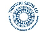 Tropical Seeds Bank AvingudaHaze.com