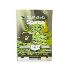 Семена Spacel World of Seeds Гроушоп AvingudaHaze