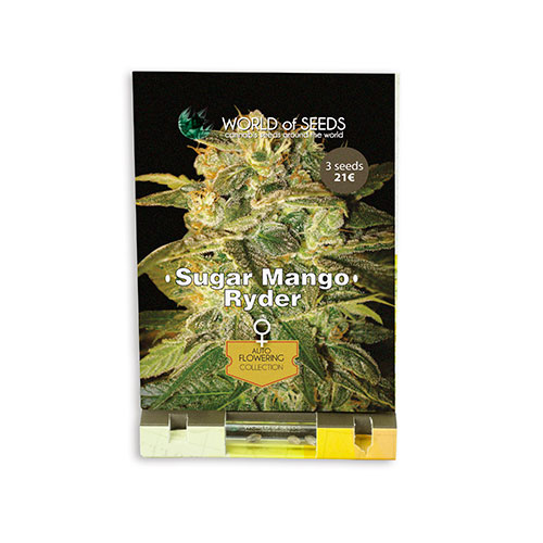 Cемена Sugar Mango Ryde World of Seeds Гроушоп AvingudaHaze
