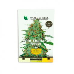 Cемена Wild Thai Ryder World of Seeds Гроушоп AvingudaHaze