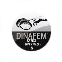 Семена Shark Attack Dinafem Seeds Гроушоп AvingudaHaze.com