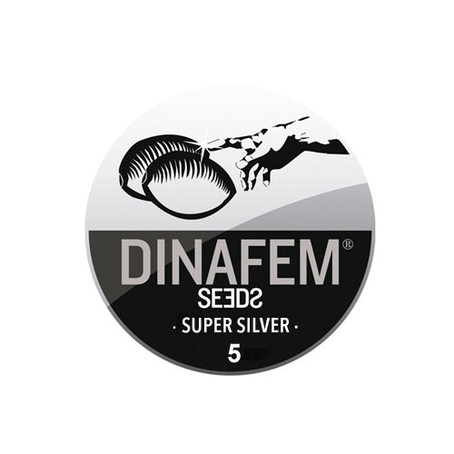 Семена Super Silver Dinafem Seeds Гроушоп AvingudaHaze.com