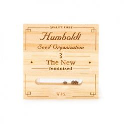 Семена The New Humboldt Seeds Гроушоп AvingudaHaze.com